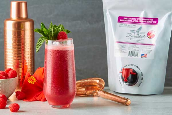 raspberry-hibiscus barmalade cocktail with pouch